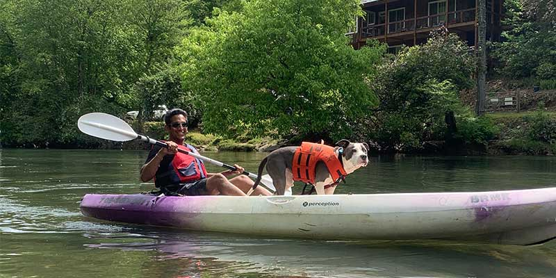 a dog and his owner kayaking down a river