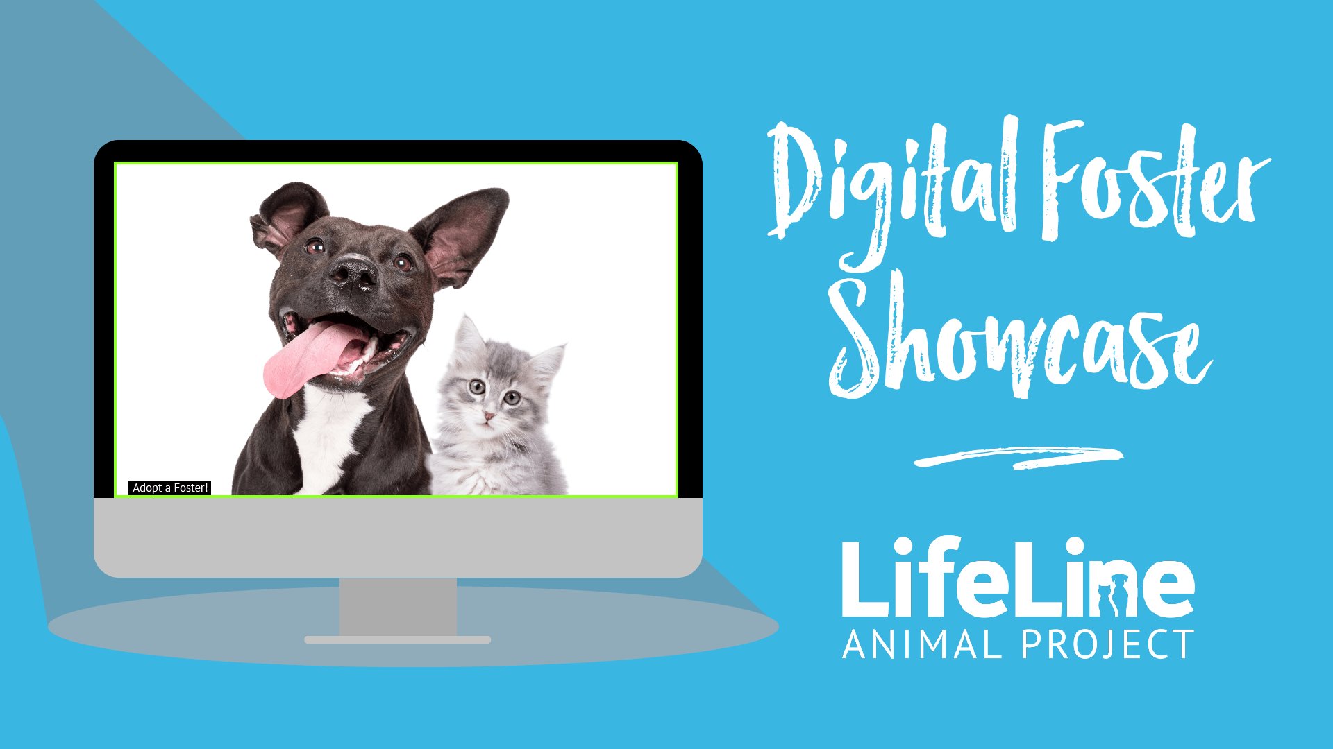 Dog and Cat in a computer screen next to words digital foster showcase