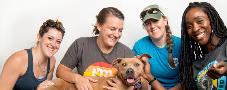 LifeLine Volunteers with a shelter dog.