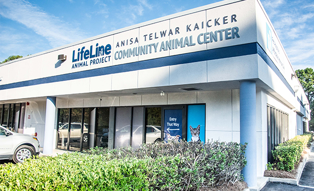 LifeLine Community Animal Center in Atlanta