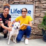 two adopters with their new rescue dog at the Fulton County animal shelter