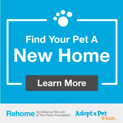 Find your pet a new home