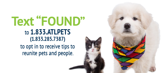 Receive found pet tips by texting FOUND to 1.833.285.7387