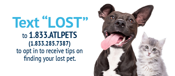 Text Lost 1.833.285.7387 to get help finding your pet