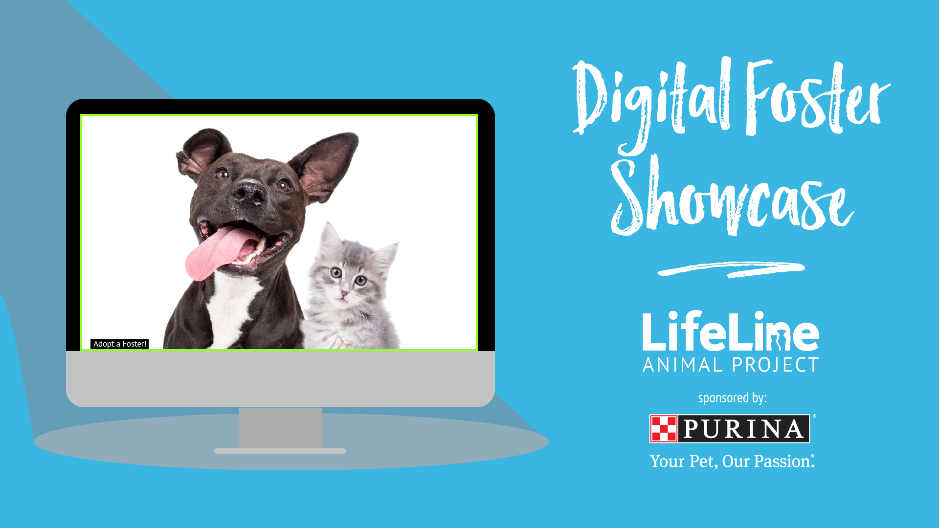 Event graphic with dog and cat on computer screen