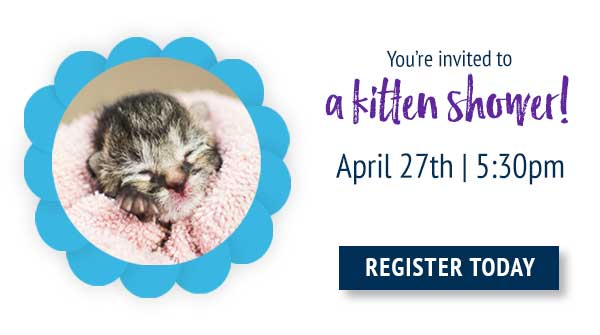 Attend our kitten shower on Tuesday, April 27th at 5:30pm!