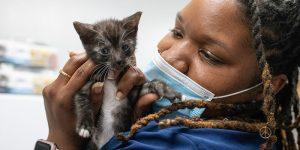lifeline veterinary technician holding a tiny kitten