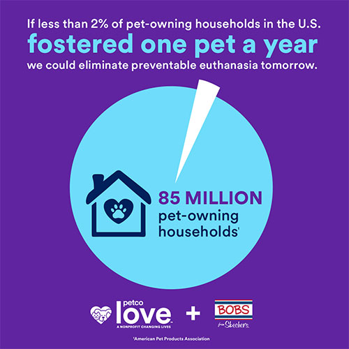 If less than 2% of pet-owning households fostered a pet, we could eliminate preventable euthanasia in shelters tomorrow.
