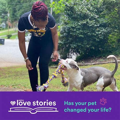 has your pet changed your life? submit your petco love story today!